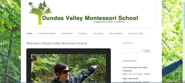Screenshot of the new DVMS website.