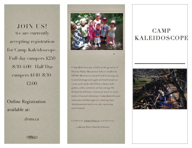 camp flyer_Page_1